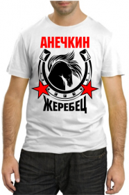 Анечкин жеребец